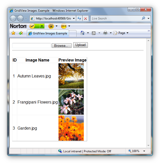 Images displayed using GridView control