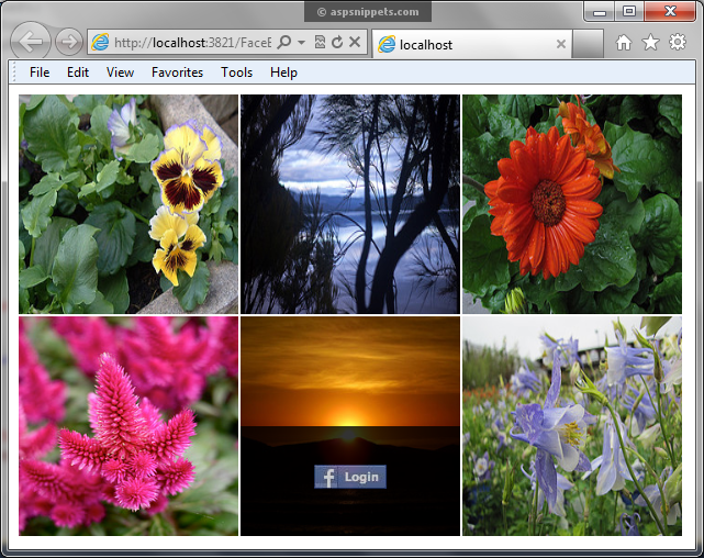 Share Image, Photo Pictures on Facebook in ASP.Net using Graph API
